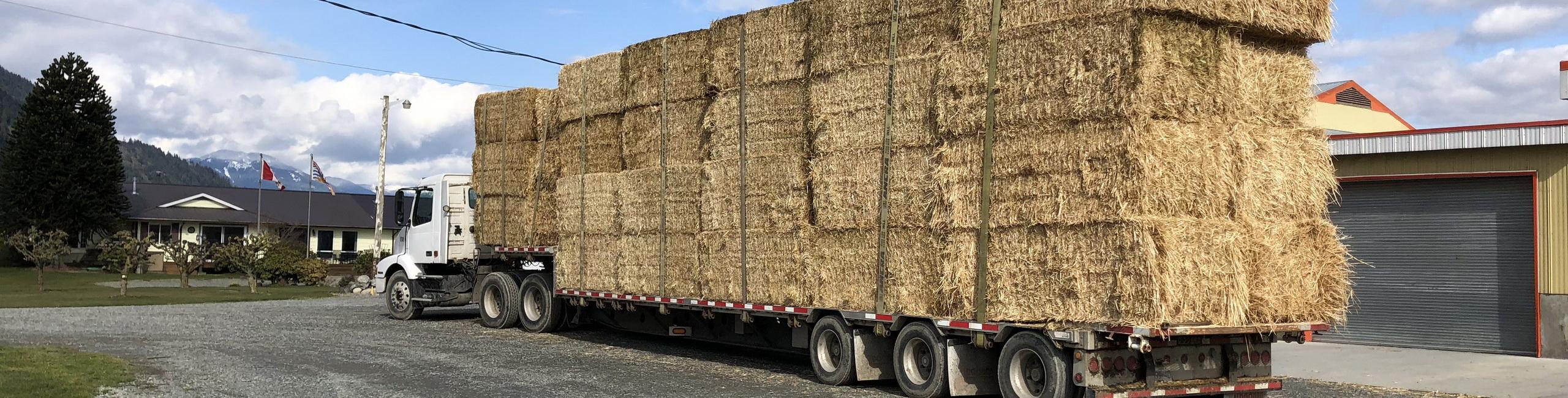 Deliver Wheat Straw